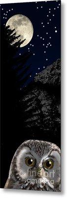 Metal Print featuring the painting Boreal Owl Or Tengmalm's Owl - Aegolius Funereus - Nationalpark Gesaeuse Xeis by Urft Valley Art