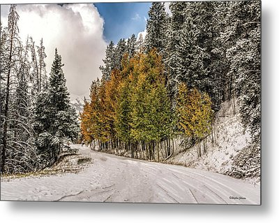Boreas Pass Road Aspen And Snow Metal Print