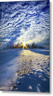 Metal Print featuring the photograph Born As We Are by Phil Koch