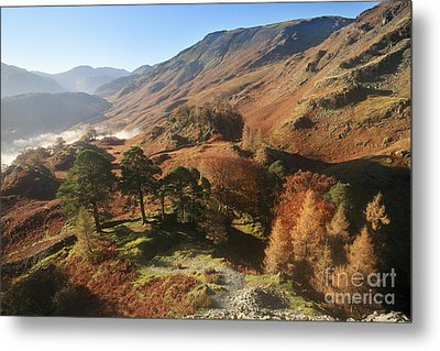 Borrowdale From Castle Crag Metal Print by Bryan Attewell