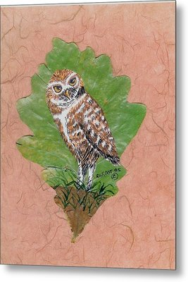 Borrowing Owl Metal Print