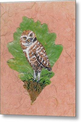 Borrowing Owl Metal Print by Ralph Root