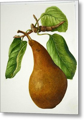 Metal Print featuring the painting Bosc Pear by Margit Sampogna