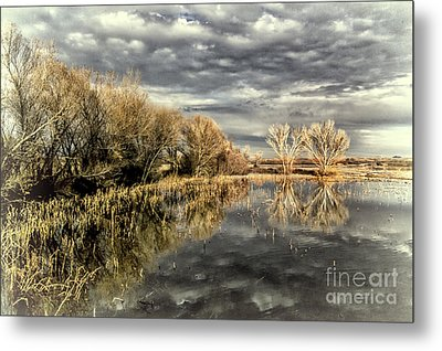 Bosque Dusk Metal Print