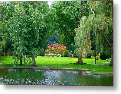 Boston Common Study 3 Metal Print