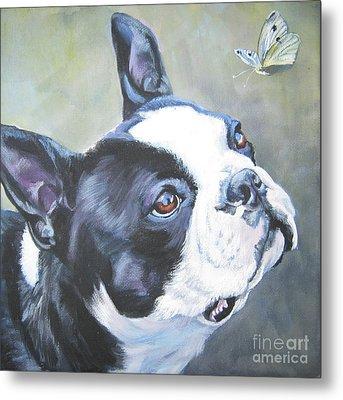 boston Terrier butterfly Metal Print by Lee Ann Shepard