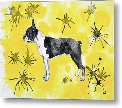 Metal Print featuring the painting Boston Terrier On Yellow by Zaira Dzhaubaeva