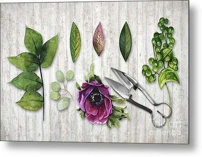 Botanica I Botanical Flower, Leaf And Berry Nature Study Metal Print by Tina Lavoie