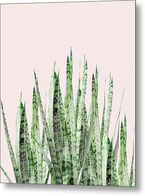 Botanical Balance Metal Print by Uma Gokhale