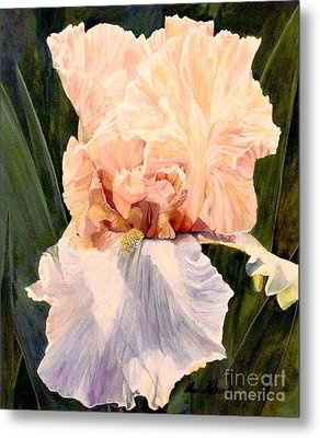 Metal Print featuring the painting  Botanical Peach Iris by Laurie Rohner