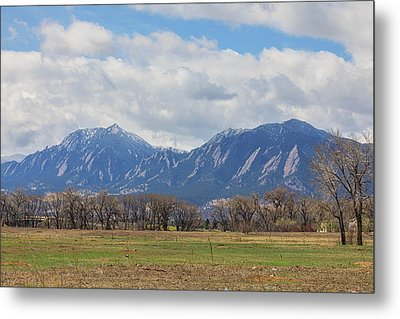 Metal Print featuring the photograph Boulder Colorado Prairie Dog View  by James BO Insogna