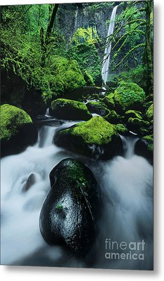 Metal Print featuring the photograph Boulder Elowah Falls Columbia River Gorge Nsa Oregon by Dave Welling