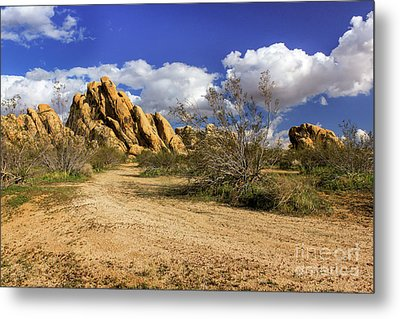 Boulders At Apple Valley Metal Print by James Eddy