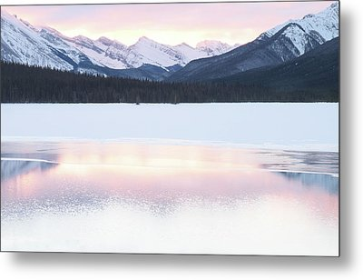 Bow Valley In Kananaskis Country Metal Print by Carol Cottrell
