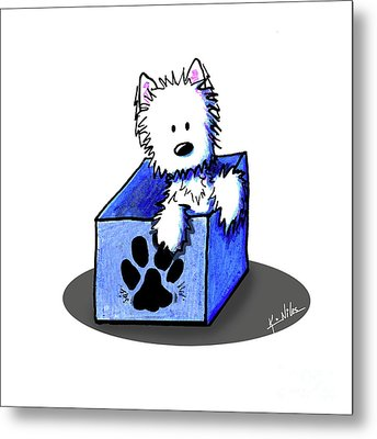 Boxed In Cuteness Metal Print by Kim Niles