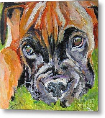 Boxer Pup Metal Print by Debora Cardaci