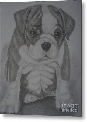 Boxer Puppy Metal Print by Ian Lennox