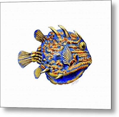 Boxfish II Metal Print