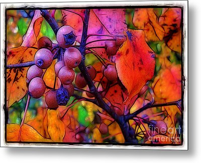 Bradford Pear In Autumn Metal Print
