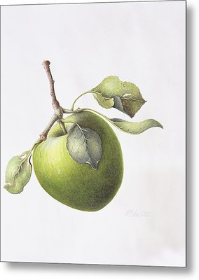 Bramley Apple Metal Print by Margaret Ann Eden