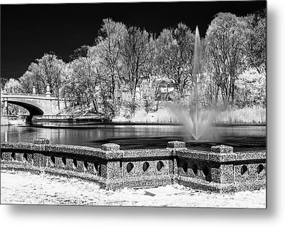Metal Print featuring the photograph Branch Brook Park New Jersey Ir by Susan Candelario