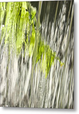Branch In Fountain Metal Print
