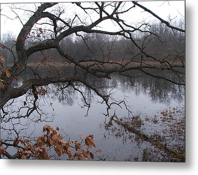 Branches And Pond Metal Print by Michael L Kimble
