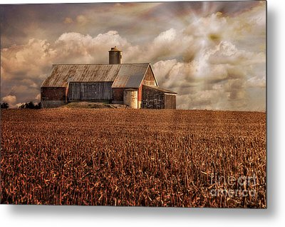 Breaking Through Metal Print by Lois Bryan