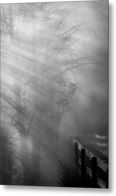 Metal Print featuring the photograph Breaking Through by Tom Vaughan