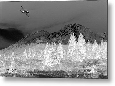 Breathtaking In Black And White Metal Print by Joyce Dickens