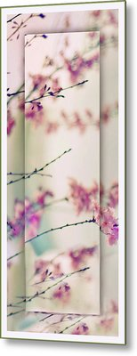 Metal Print featuring the photograph Breezy Blossom Panel by Jessica Jenney