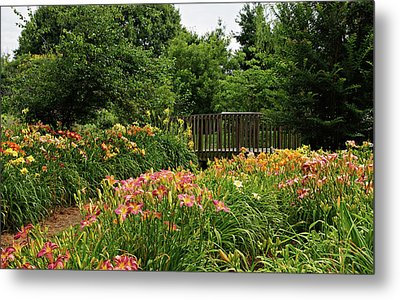 Metal Print featuring the photograph Bridge In Daylily Garden by Sandy Keeton