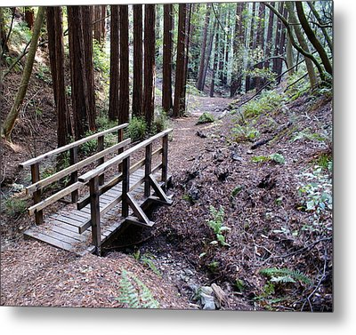 Bridge In The Redwoods Metal Print by Ben Upham III