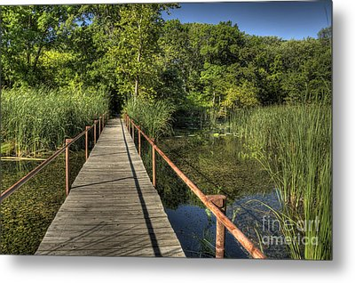 Metal Print featuring the photograph Bridge Into The Forest At Lake Murray by Tamyra Ayles