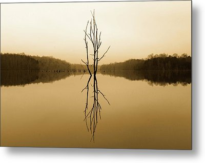 Metal Print featuring the photograph Briery Creek  by Alan Raasch