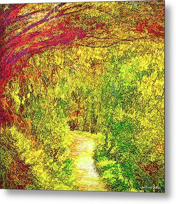 Bright Afternoon Pathway - Trail In Santa Monica Mountains Metal Print by Joel Bruce Wallach