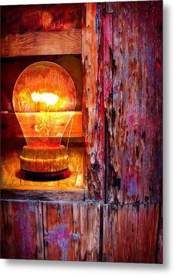 Bright Idea Metal Print by Skip Hunt