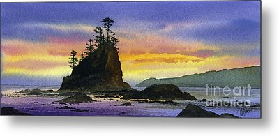 Bright Seacoast Sunset Metal Print by James Williamson