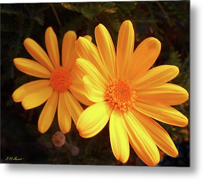 Brighten Your Day Metal Print by Michael Durst