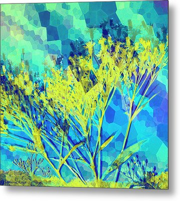 Brighter Day Metal Print by Shawna Rowe
