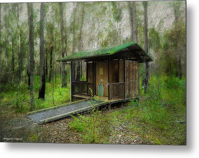 Brimbin Nature Reserve 01 Metal Print by Kevin Chippindall