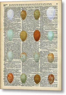 British Birds Eggs Metal Print