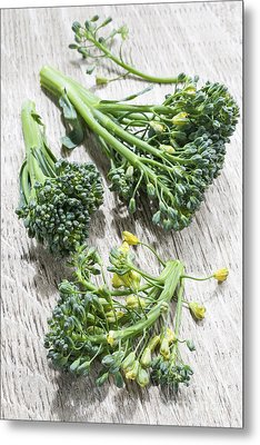Broccoli Florets Metal Print by Elena Elisseeva