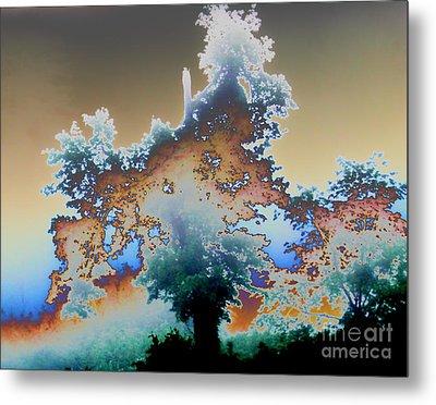 Broken Dream Tree  Metal Print by Jesse Ciazza
