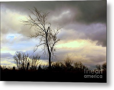 Broken Metal Print by Elfriede Fulda