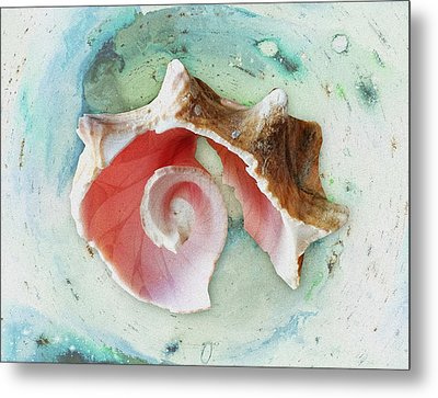Broken Shell Metal Print by Anastasiya Malakhova
