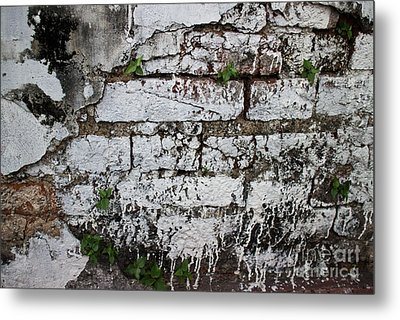 Broken Stucco Wall With Whitewashed Exposed Brick Texture And Ve Metal Print by Jason Rosette