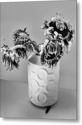 Broken Sunflowers Metal Print by William Dey