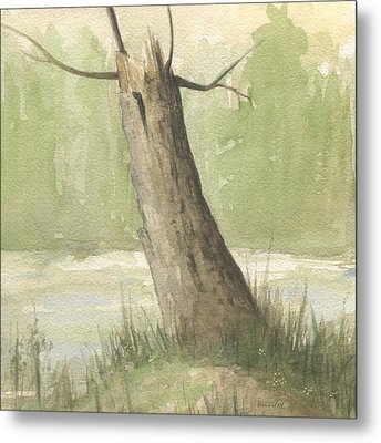 Broken Tree Metal Print