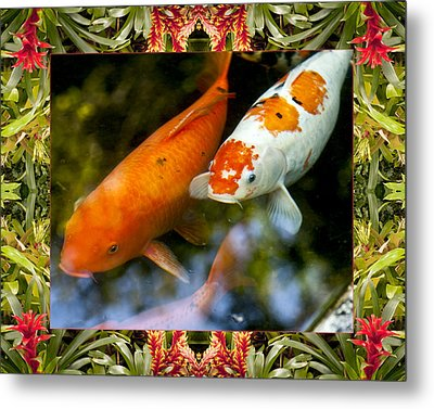 Bromeliad Koi Metal Print by Bell And Todd
